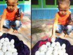 puluhan-butir-telur-yang-ditemukan-sofyan-di-bantaran-bengawan-solo-lamongan.jpg