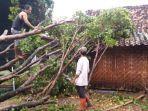 sejumlah-rumah-di-kabupaten-madiun-roboh-setelah-diterjang-angin-kencang.jpg