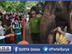 siswa-gajah-surabaya_20151210_203301.jpg