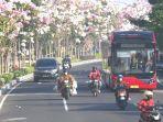 surabaya-diakui-sebagai-kota-memiliki-udara-terbersih-se-asean-atau-asia-tenggara.jpg