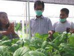 urban-farming-ketua-dprd-kota-surabaya-adi-sutarwijono-tengahmeninjau-tanaman-hidroponik.jpg