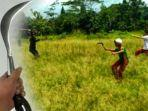 viral-video-pelajar-sd-tawuran-bawa-celurit-gir-menyebar-di-whatsapp-sebelumnya-juga-di-surabaya.jpg