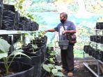 warga-beraktifitas-di-kebun-sayur-yang-dipenuhi-bibit-sayuran-di-dalam-polybag.jpg