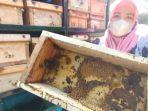 warga-rt-3-rw-9-asrama-polisi-aspol-bubutan-surabaya-menunjukkan-kotak-sarang-lebah-klanceng.jpg