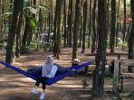 wisata-hutan-pinus-semeru_20170519_203911.jpg