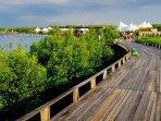 wisata-mangrove-bee-jay-bakau-resort-bjbr.jpg