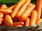 wortel-carrot-sayuran-sehat_20160212_153454.jpg
