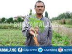 wortel-china_20170828_111556.jpg