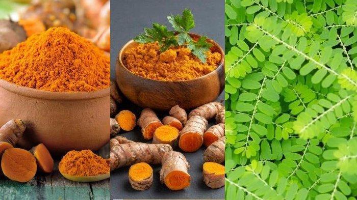 6 Tanaman Herbal Untuk Tingkatkan Imun Cegah Infeksi Virus Corona: Ada Temulawak, Kunyit, Meniran
