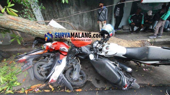 Angin Kencang Sebabkan 7 Sepeda Motor Rusak Tertimpa Pohon Ambruk di Jalan Tenes Kota Malang
