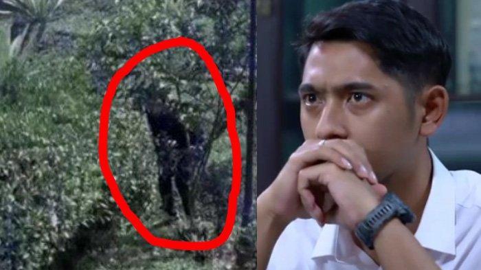Sinopsis Ikatan Cinta Minggu 5 September 2021: Pelaku Teror Terekam CCTV, Al Siap-siap Buru Pelaku