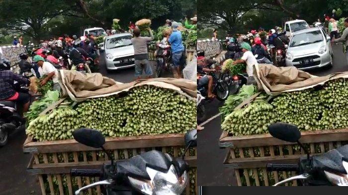 Pedagang di Malang Bagi-bagi Sayur Gratis, Dampak Wabah Covid-19