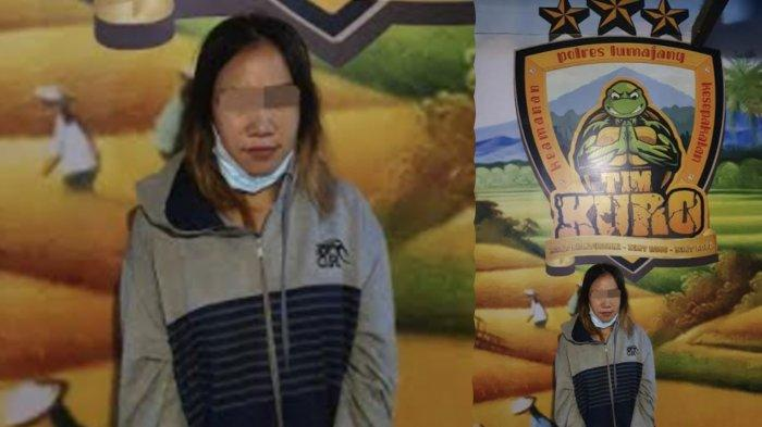 Polres Lumajang Tangkap 1 Begal Wanita, Modus Ajak Korban Kenalan Lalu Digebuki dan Motor Dijarah