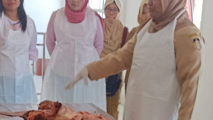 Kasus di Blitar, Banyak Sapi Terlihat Sehat Ternyata Mengandung Cacing pada Paru dan Hati