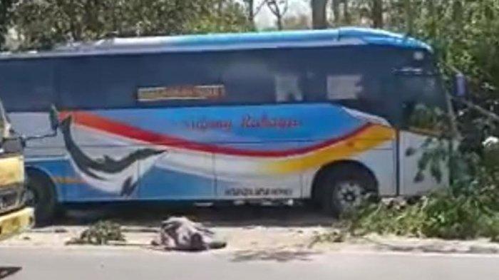 Bus Sugeng Rahayu Tewaskan 1 Pengendara Motor di Saradan Madiun, ini Kronologinya