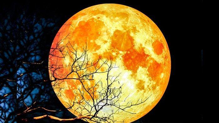 Cara Melihat Gerhana Bulan Total 2021 dengan Mata Telanjang Petang Ini, Terjadi Pukul 18.18 WIB