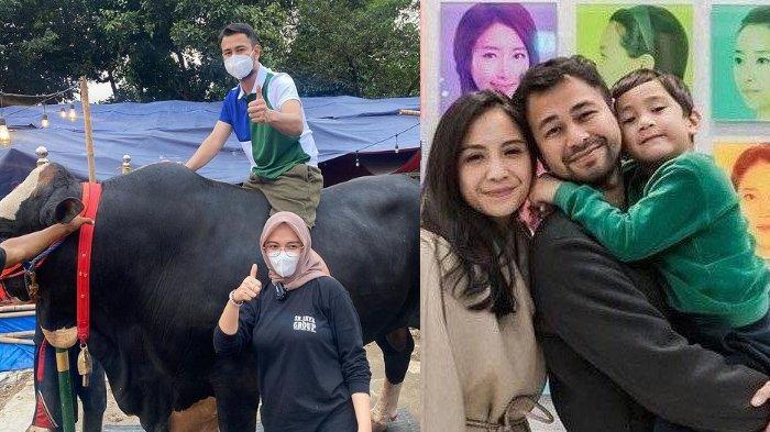 Curhat Penjual Ternak Saat Raffi Ahmad Beli 10 Sapi untuk Kurban, Tanpa Ribet & Pesan Sejak 7 Bulan