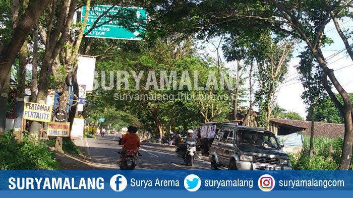 Dishub Kabupaten Malang Koordinasi dengan Instansi Terkait untuk Pembersihan Dahan Pohon