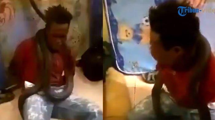Deretan Fakta Polisi Gunakan Ular Untuk Interogasi Pencuri, Videonya Viral di WhatsApp (WA)