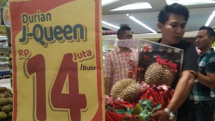 Fakta-fakta Durian J-Queen, yang Berharga 14 Juta Sebuahnya, Hanya Berbuah Tiga Tahun Sekali