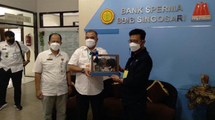 Menteri Pertanian Syahrul Yasin Limpo Pacu Ekspor Sperma Sapi Domestik di BBIB Singosari Malang