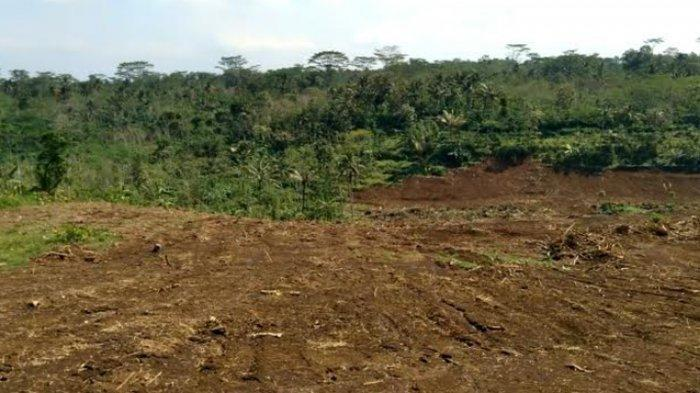 Pembangunan Embung di Kromengan Malang Kuras Dana Rp 23 Miliar