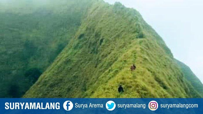 Tingkat Bahaya Gunung Piramid Bondowoso Disandingkan dengan Carstensz Pyramid di Papua
