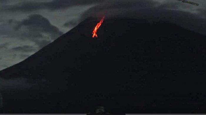 Gunung Semeru Kembali Muntahkan Guguran Lava, BPBD Lumajang Sebut Lintasan Guguran Capai 900 Meter