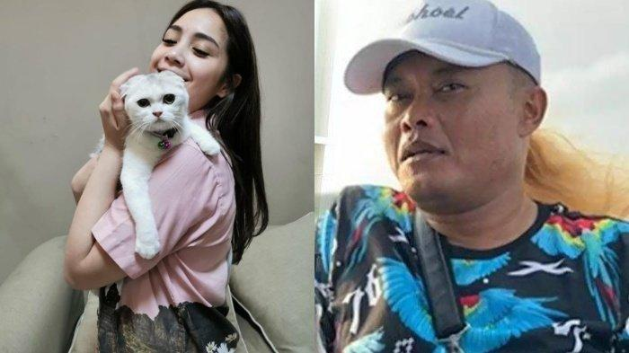 Harga Satu Kucing Nagita Slavina Lebih dari Rp 50 Juta, Raffi Ahmad Bikin Sule Kaget Dengarnya: Wow