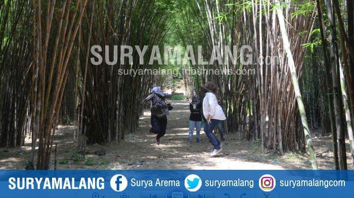 Tak Hanya Taman Bungkul, Ini Daftar Taman di Surabaya, Semuanya Tanpa Tiket Masuk Alias Gratis!