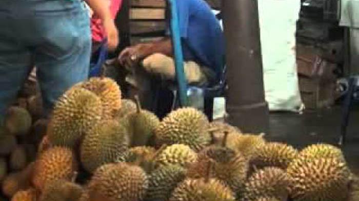 Penggemar Durian Wajib Baca, Ini Lho Cara Memilih Buah Durian yang Paling Enak, Triknya Sederhana