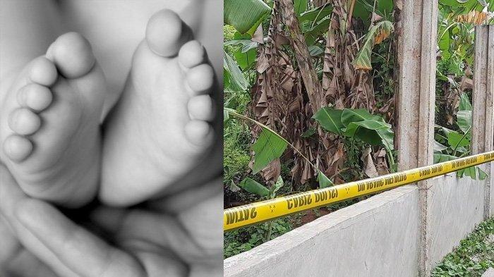 Cinta Terlarang Kakak Adik Berujung Temuan Jasad Bayi di Semak-semak, Diduga Hasil Hubungan Sedarah