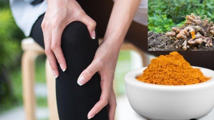 Cara Mengolah Temulawak untuk Obat Asam Urat, Resep Sederhana dan Mudah Dibuat