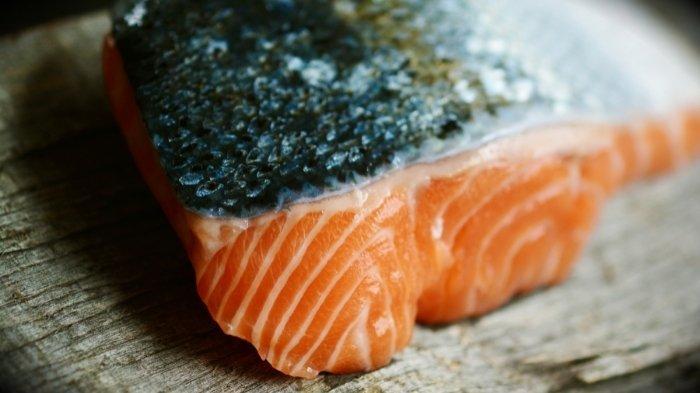 Ilustrasi Salmon: makanan ikan cupang agar warnanya bagus