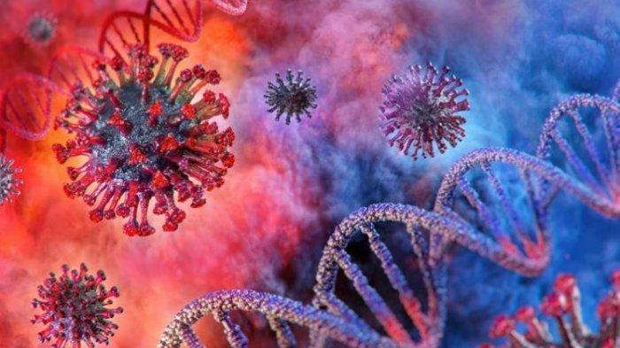 Indonesia Bisa Hentikan Pandemi Covid-19 dengan Metode Penanganan Pandemi Flu Burung Tahun 2005-2010