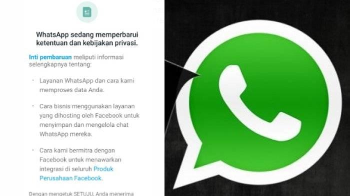 5 Poin Penting Kominfo Minta Pertanggungjawaban WhatsApp Berbagi Data Pribadi atau Akun Hilang