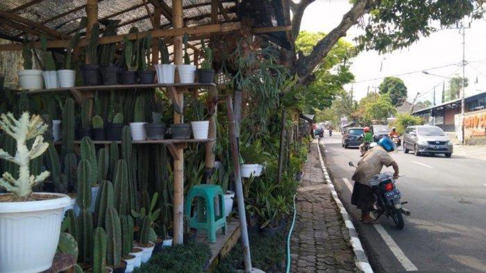 DPRD Batu Usulkan Jalan Tembus di Jalan Bukit Berbunga untuk Urai Kemacetan