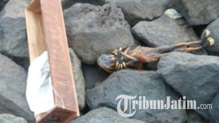 Ada Penampakan Nyata di Pantai Kenjeran Surabaya, Bikin Warga Heboh, Hii Mengerikan . . .