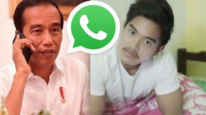 Beredar Chat Grup WhatsApp Keluarga Jokowi, Kaesang Heran dengan Emoji Aneh yang Muncul Tiap Pagi