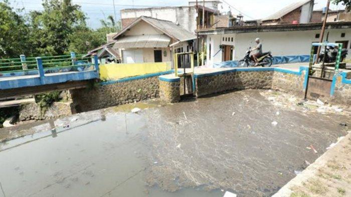 Limbah Kotoran Ternak Sapi di Ngaglik Cemari Kali Kebo Kota Batu, Puluhan Ikan Ternak Warga Mati