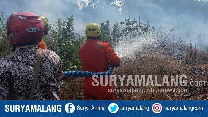 BREAKING NEWS - Kebakaran Lahan Kosong di Tuban Bikin Guru dan Siswa SMK Panik
