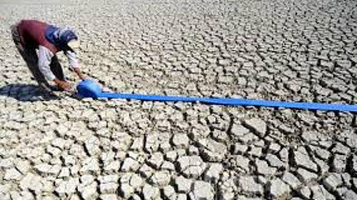 19 Desa di Lamongan Dilanda Kekeringan, Air di Telaga Pun Menyusut