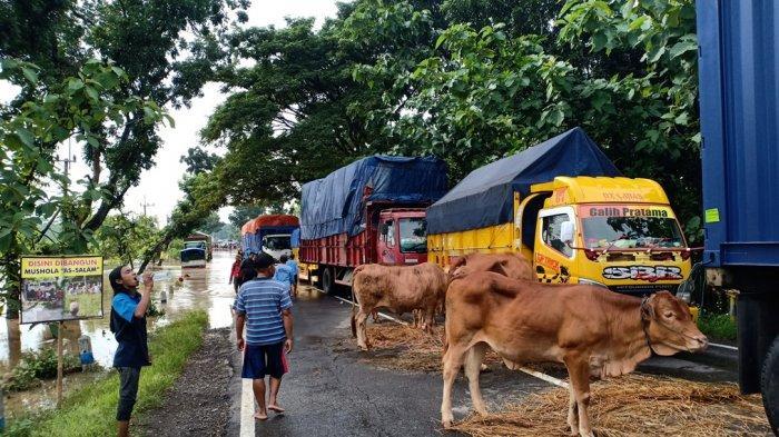 Banjir Putuskan Jalur Madiun-Ngawi, Kendaraan Dialihkan Melalui Jalan Tol