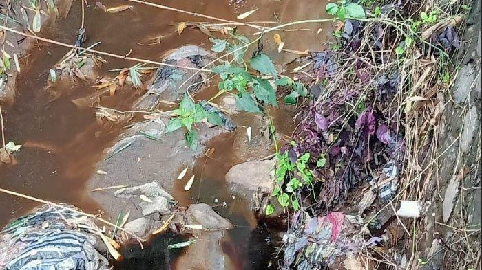 Hasil Uji Lab, Air Tercemar di Junrejo Berbahaya untuk Anak-anak dan Peternakan
