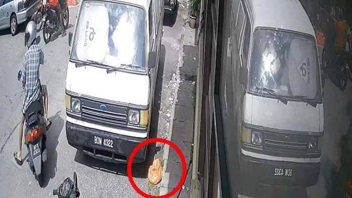 Video Sadis Terekam CCTV Pria Buang Kucing Dalam Kantong Plastik Hingga Mati
