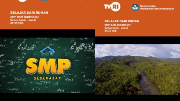 Kunci Jawaban Soal SMP di TVRI Jumat 8 Mei 2020: Benarkah Hutan Tropis Kalimantan Kaya Akan Hayati?