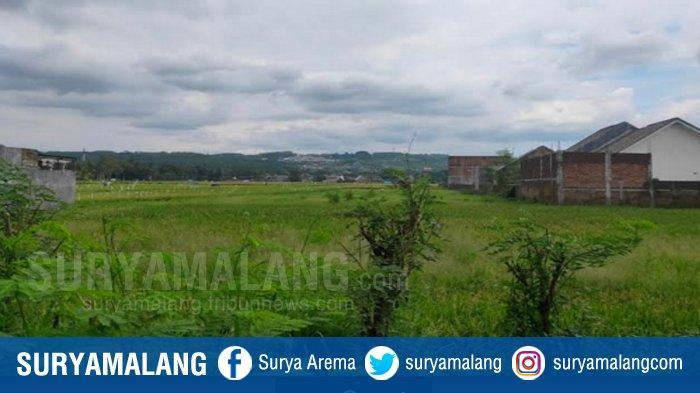 Tiap Tahun 5 Persen Lahan Pertanian di Kedungkandang Kota Malang Beralih Fungsi