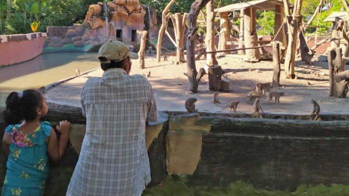 Warga Sekitar Surabaya Manfaatkan Libur Lebaran dengan Kunjungi KBS