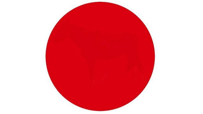 Yakin Mata Anda Sehat? Coba Jawab : Ada Gambar Apa di Tengah Lingkaran ini?
