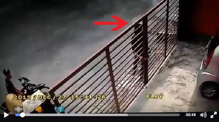 Maling Obok-obok Kantor MIN Gedog, Kota Blitar, Penjaga Sekolah Kaget Saat Lihat Barang Ini